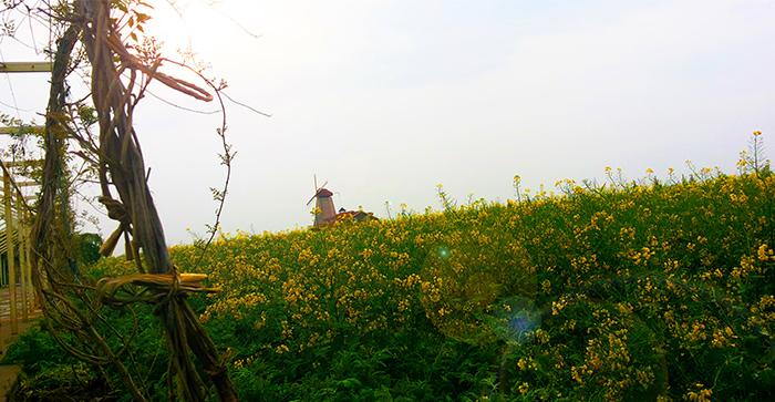 仵博儒先生应邀实地调研陕西咸阳尚特梅斯创意农庄