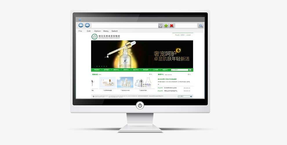 樊文花网站建设